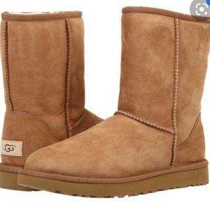 UGG Australia Brown Chestnut Boot
